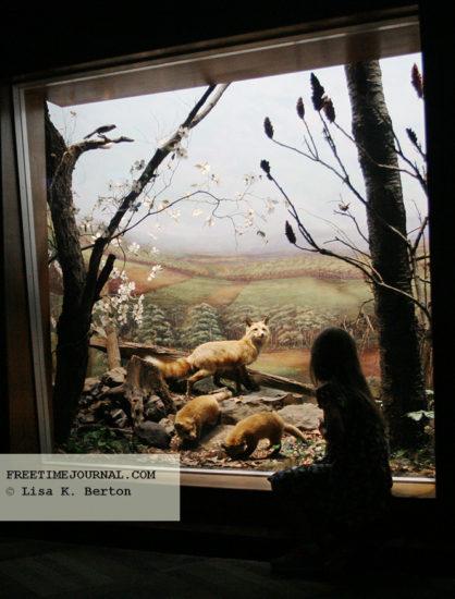 StateMuseum-girl-mammalhall